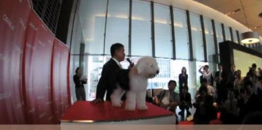 日本オラクルの4代目社員犬の入社式の模様