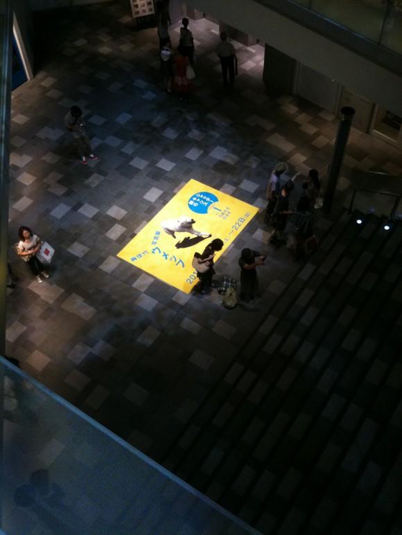 梅佳代写真展「ウメップ」 in うめかよひるず:表参道ヒルズ上階から望む