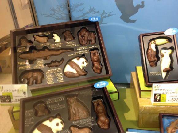 ZOOLOGYの動物チョコレート見本