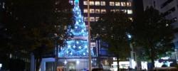 エイベックス本社のクリスマスツリー