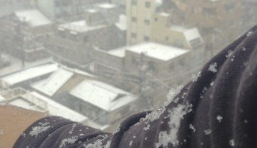 都心で初雪!国立競技場のサッカー高校選手権決勝は中止に