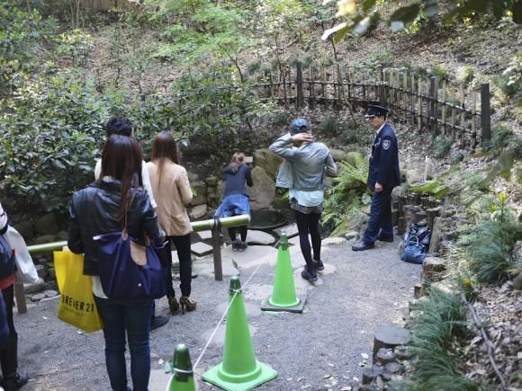 清正井の観光客