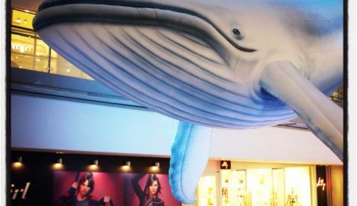 巨大クジラが登場!表参道ヒルズ館内を海に見立てて