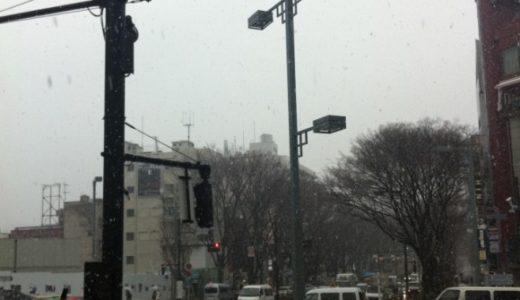 原宿・表参道にも積雪