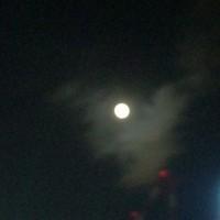 秋葉原からの満月