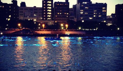 東京ホタルが幻想的 / 隅田川に10万個のLEDを放流 / スカイツリーも点灯