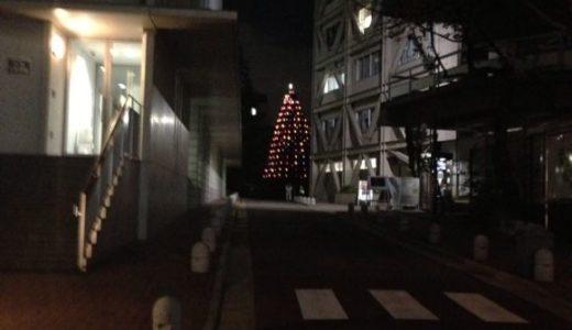 青学のクリスマスツリーが点灯
