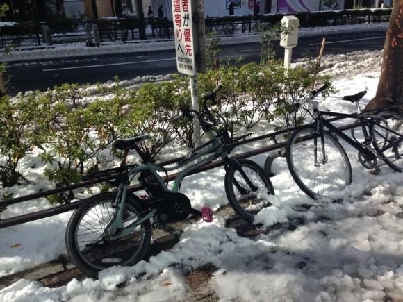 翌朝すっかり溶けた雪